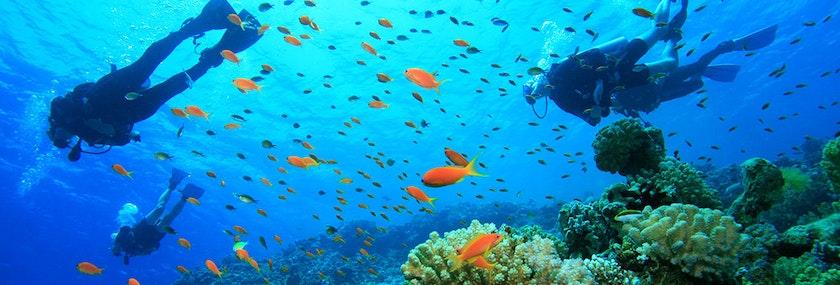 Scuba Diving Stag Do