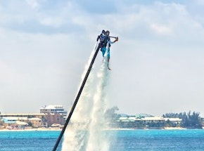 Dolphin Jet Pack Riga Stag